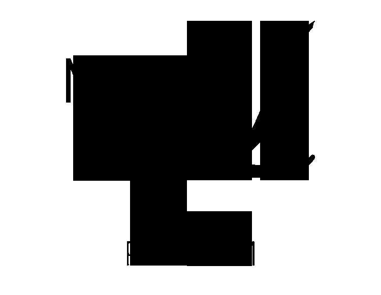 maria-lux-iran-perfume-distribution-havin-tejarat-logo-black